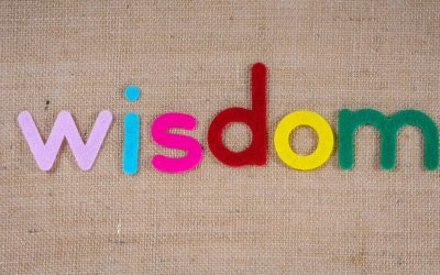 "What the World Needs is ""Big Wisdom"""